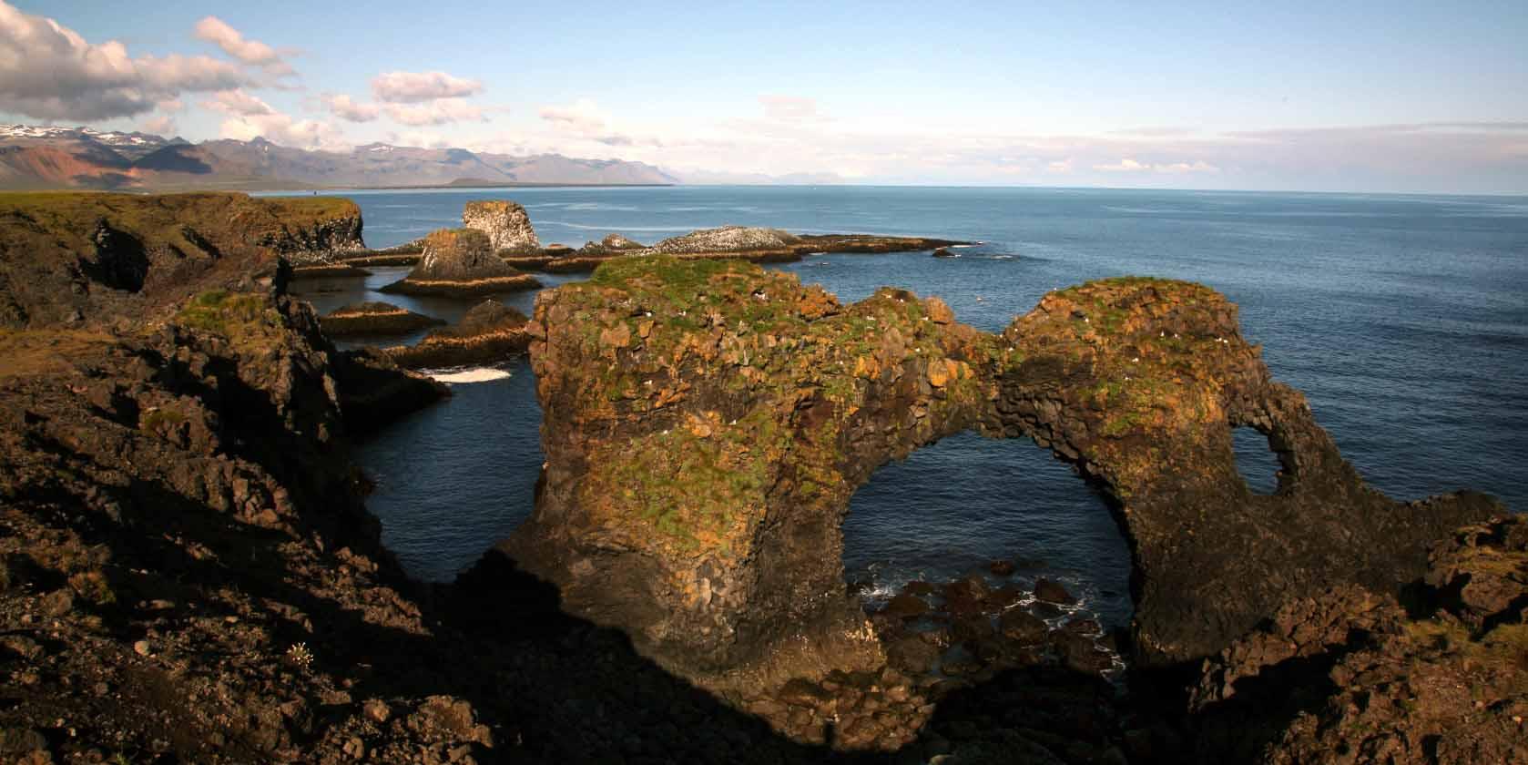 Island ProFishing